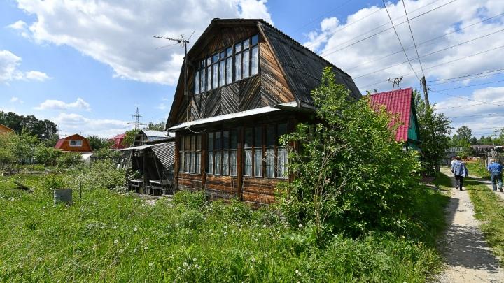 Делаем классный газон на даче своими руками: пошаговая инструкция