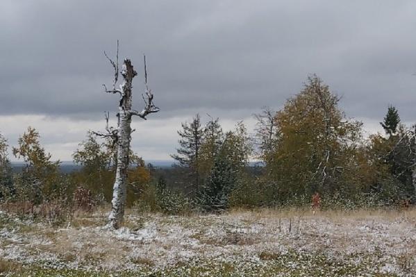 В эти выходные в Каменном городе прошел снегопад
