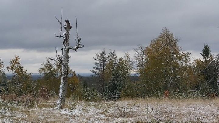 В Каменном городе на востоке Прикамья прошел снегопад. Смотрим фото