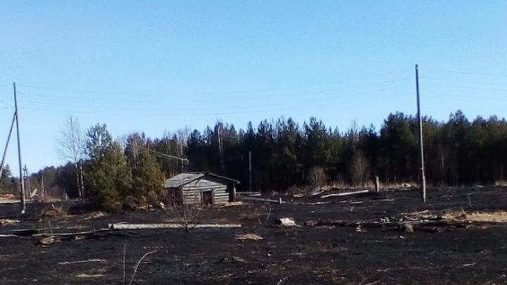В Шенкурском районе жители деревни жгли мусор и лишились дома