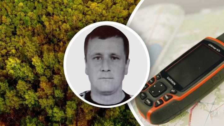 Поиски лесника, потерявшегося в тобольском лесу, приостановили