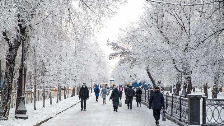 «Окажемся в холодной арктической массе»: в Новосибирске снова похолодает до -20градусов