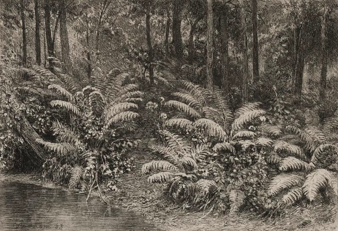 И. И. Шишкин. Папоротники. 1885