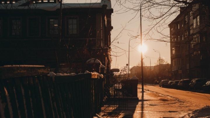 Арт-объекты и деревья с подсветкой. Власти заказали разработку проекта пешеходной улицы вцентре Тюмени