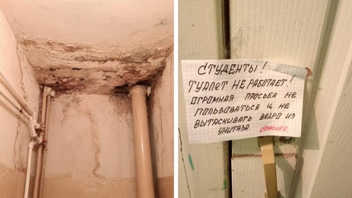 «Кровля не протекает, грибка — нет»: Минобр региона ответил 29.RU про общежитие в Северодвинске
