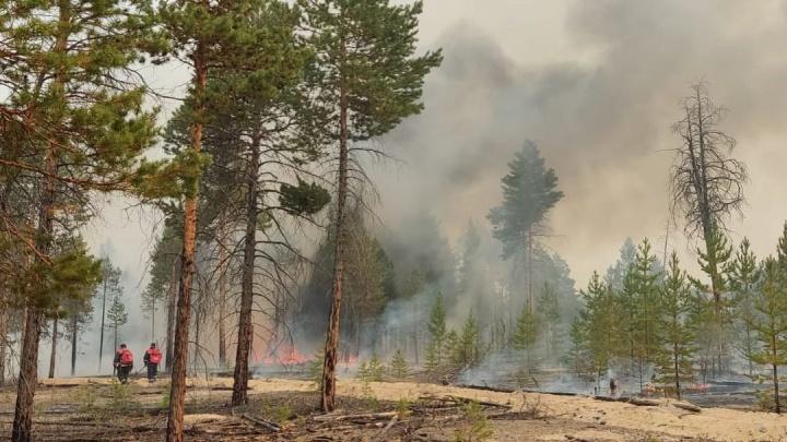 «Голоса возмущенных услышаны»: в горящей Якутии приземлился самолет-амфибия МЧС из Красноярска