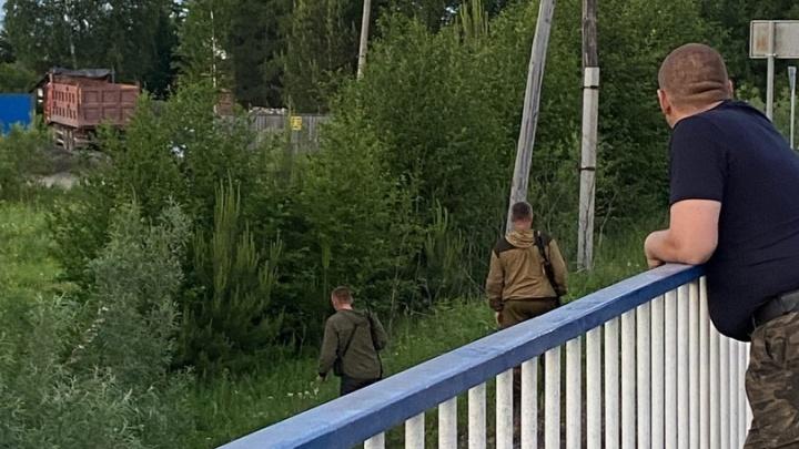 В Лесосибирске медведь вышел к людям и напугал жителей