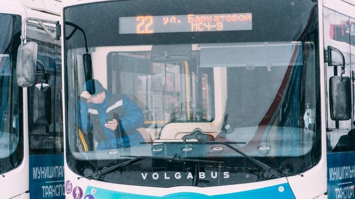 Омской области выделили 613 миллионов на закупку новых автобусов