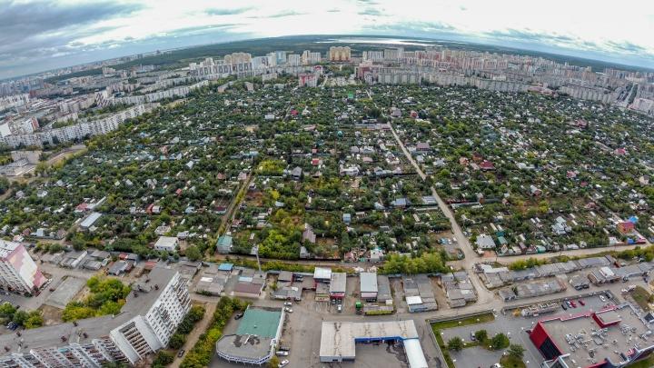 «Если сады разрежут на части — всё умрет»: хозяев домов на Северо-Западе обеспокоили планы по продлению улицы Ворошилова