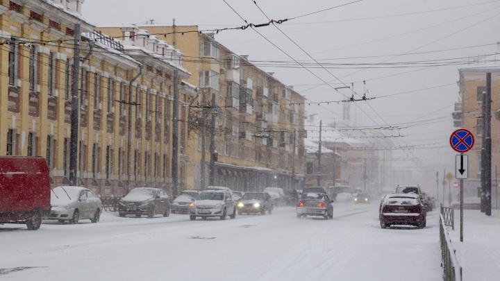 На Ярославль надвигается снегопад: в мэрии рассказали, какподготовились кобильным осадкам