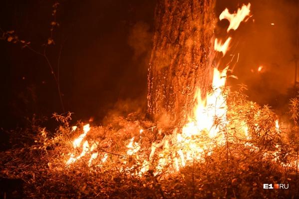 О пожаре стало известно сегодня, но местные жители говорят, что видели огонь еще в воскресенье