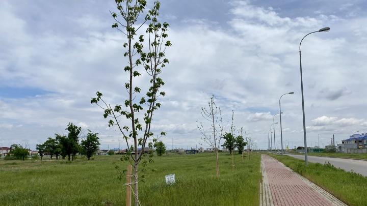 Ко Дню России котельниковцы реализуют новый проект развития города