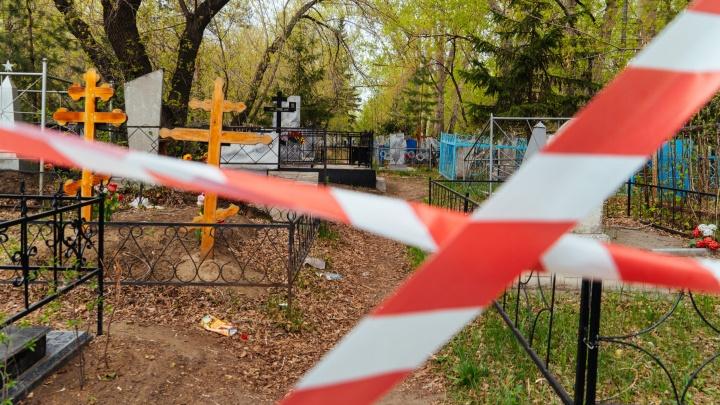 Десять кладбищ Омска обработают от клещей и крыс