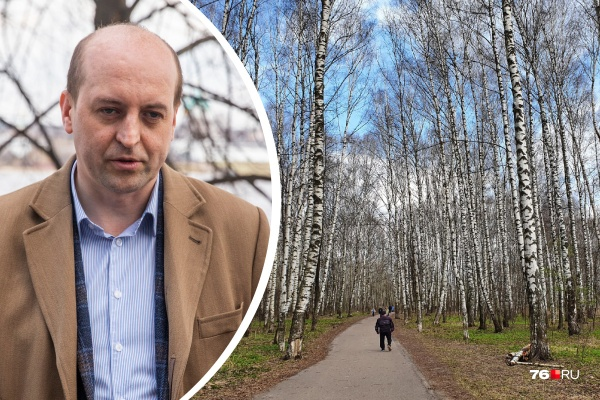 «Стройка домов невозможна»: проектировщик реконструкции Павловского парка рассказал, что будет с рощей