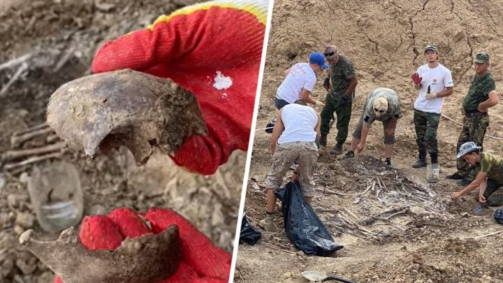 На месте массовых расстрелов в Сальске нашли останки 20 детей