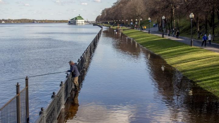 Потоп и парад: каким был Ярославль в первую майскую неделю