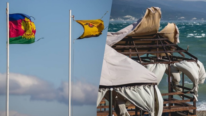 Порванные флаги, вырванные с корнями деревья и упавшие знаки. Последствия норд-оста в Новороссийске