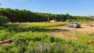 Экологи нашли кучу нарушений, а прокуратура начала проверку вырубок близ Щёлоковского хутора