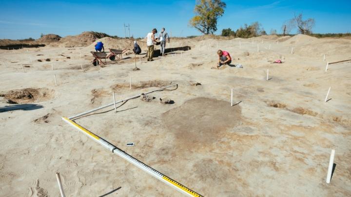 В Нижегородской области археологи нашли редкое поселение бронзового века