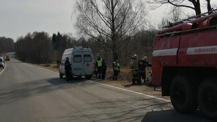 В Ярославской области легковушка врезалась в дерево: пострадал водитель