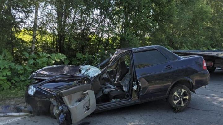 Водитель погиб на месте: в Ярославской области легковушка врезалась в лося
