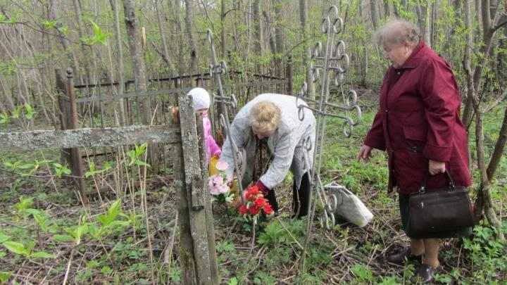 Глава Коноши переписал часть кладбища под «место отдыха»