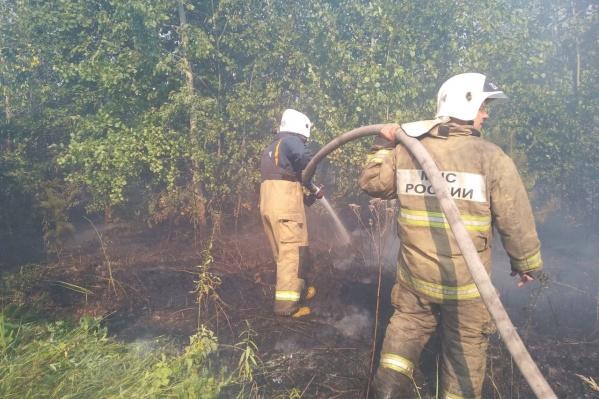 Больше суток понадобилось пожарным на локализацию возгорания в 17-м квартале Тольяттинского городского лесничества