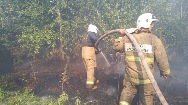 Николай Ренц назвал одну из основных вероятных причин крупного пожара в Тольятти