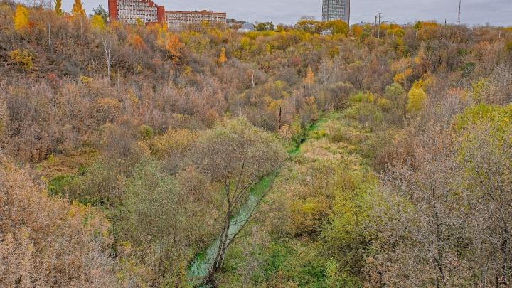 В Перми речка Егошиха окрасилась в зеленый цвет. Объясняем, в чем причина