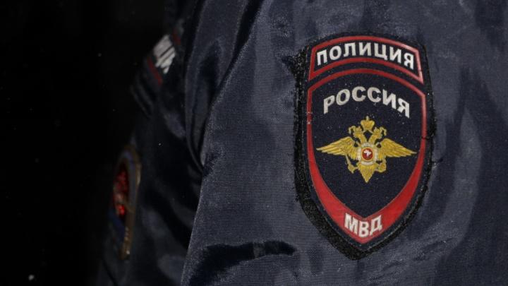 Нашли злоумышленника, который напал на пенсионера с собакой в Северодвинске. Полицейский ли он?