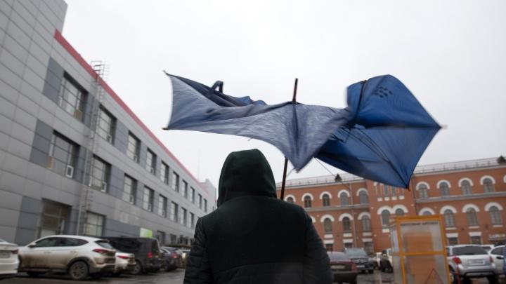 «Могут возникнуть чрезвычайные ситуации»: в Ярославской области МЧС опубликовало экстренное предупреждение