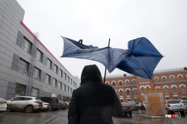Судя по прогнозам, завтра в Ярославле будет ветрено и дождливо