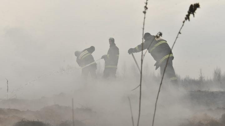 «Избавиться от смога не получится». МЧС и синоптики рассказали, сколько терпеть удушающий запах гари