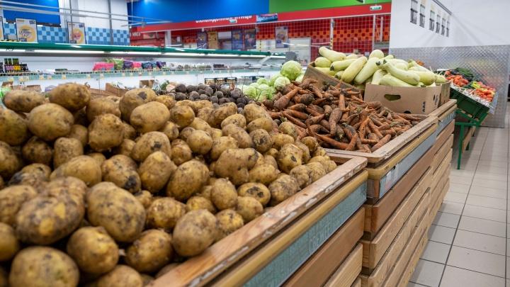 В Кузбассе за неделю подорожали продукты. Больше всего — колбаса, молоко и морковь