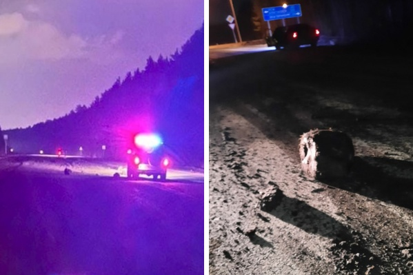 Булыжники, выпавшие из кузова самосвала, стали причиной нескольких аварий