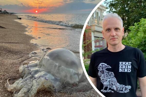 Медузы — достопримечательность азовских пляжей