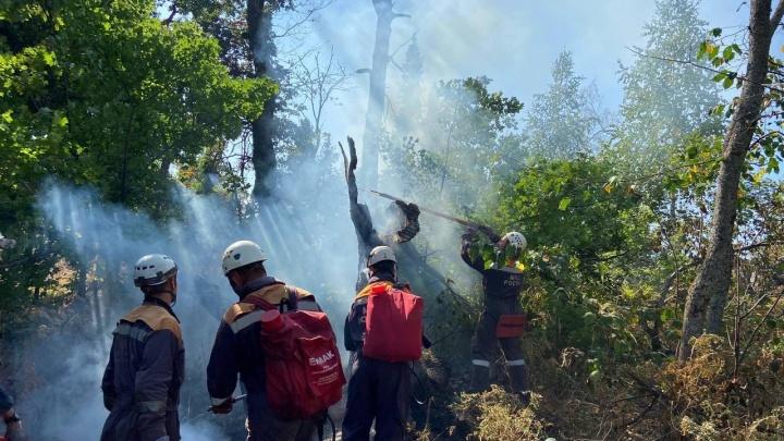 В Башкирии возникло три новых очага лесных пожаров