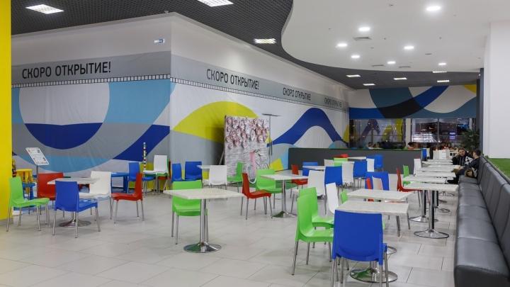 Кафе, рестораны и музеи станут чистой зоной от COVID-19: всё о вводе QR-кодов в Волгограде