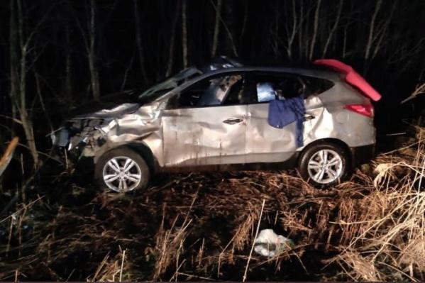 Автомобиль столкнулся с лосем и вылетел с дороги