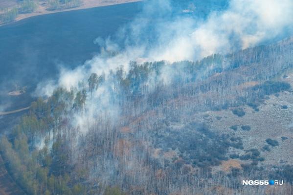 """Штрафы за нарушение пожбезопасности в омских лесах варьируются от <nobr class=""""_"""">4 тысяч</nobr> до полумиллиона рублей"""