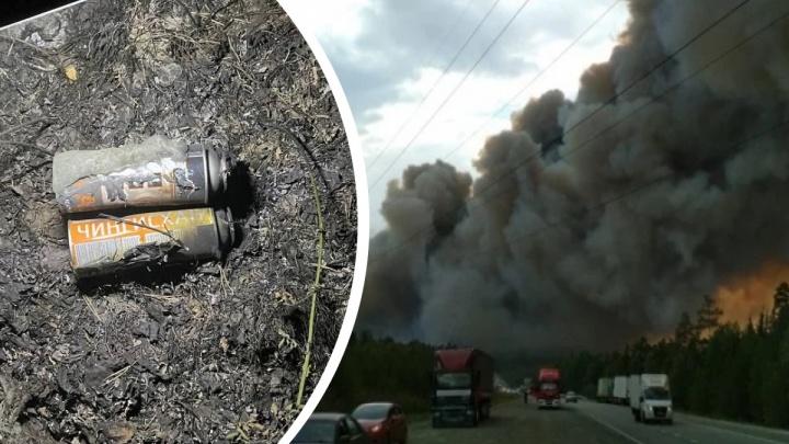 Под Екатеринбургом на месте очага лесного пожара нашли газовые баллоны поджигателей