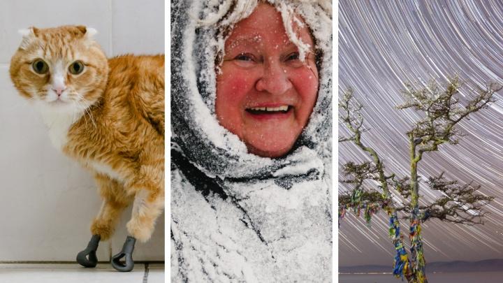 Работы двух новосибирских фотографов взяли на выставку в Эрмитаже — взгляните на эти кадры