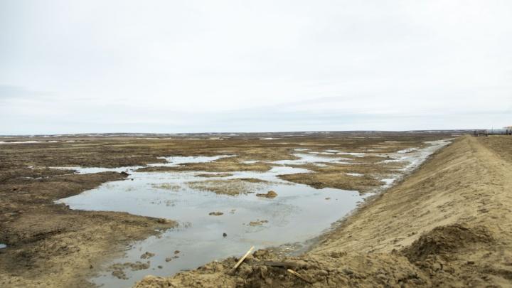 В Ненецком автономном округе произошел разлив нефтепродуктов