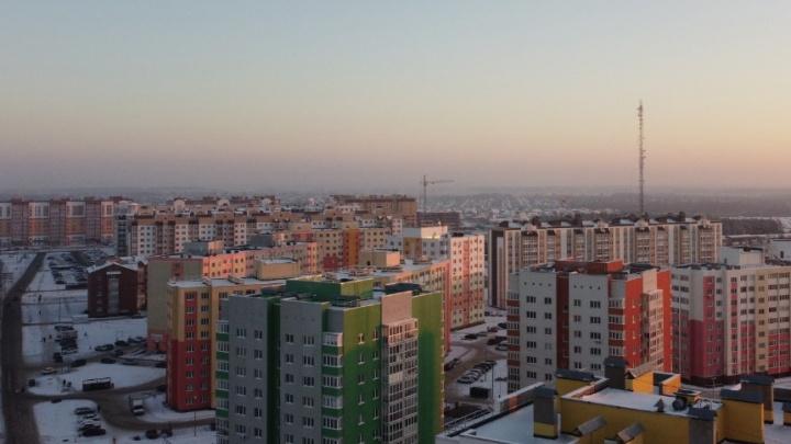 Житель Башкирии выкинул котенка с девятого этажа дома, момент попал на видео