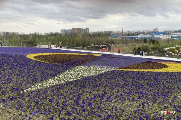 В парке«Краснодар» посетители могут ходить по газонам, но топтать и рвать цветы нельзя