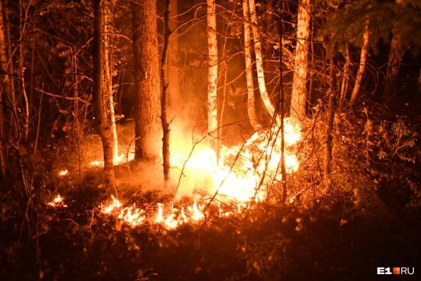Несколько дней на Урале горят леса