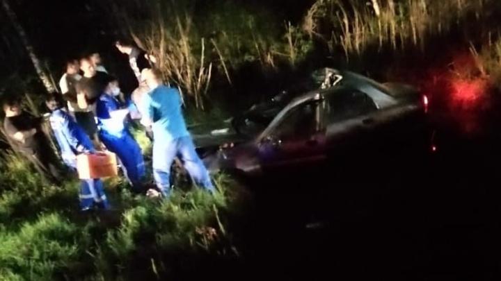 На тюменских трассах две машины улетели в кювет после столкновения с лосями