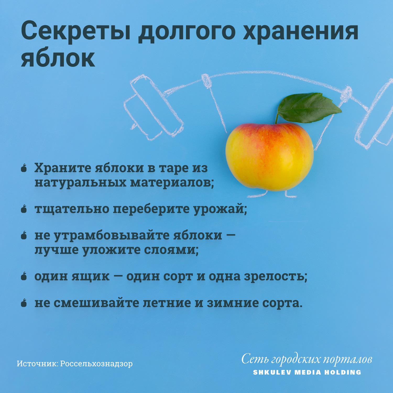 Как увеличить срок хранения яблок