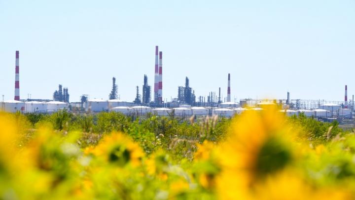 Экологический след: гид по предприятиям, которые сделали регион чище