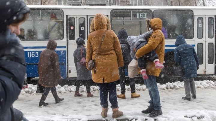 В Волгограде официально признали мартовский снегопад аномальным
